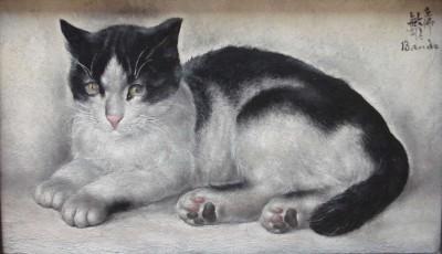 Chat noir et blanc de Toshio Bando