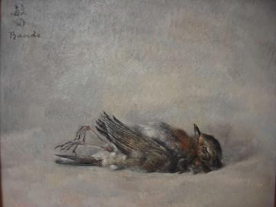 Oiseaux tombés du nid - Toshio Bando