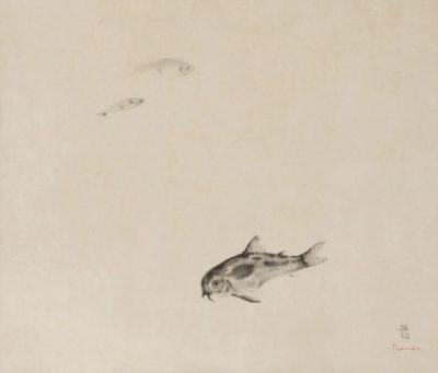 poissons et poissons chat-toshio bando
