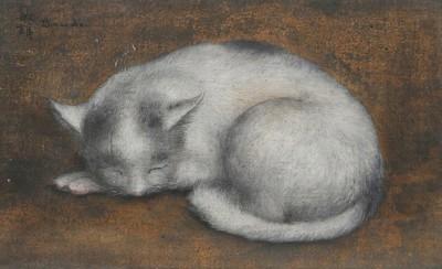 Chat blanc de Toshio Bando