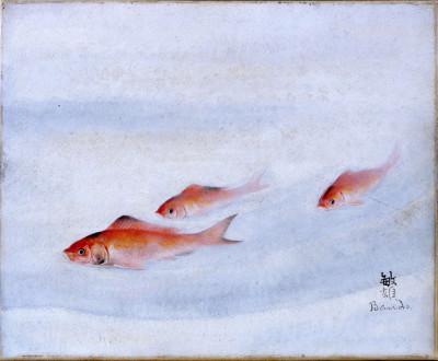 Trois poissons rouges de Toshio Bando