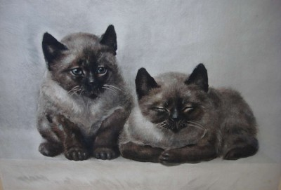 Les chatons - Gravure de Toshio Bando